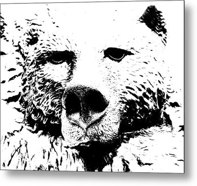 The Bear Metal Print by Charlie and Norma Brock