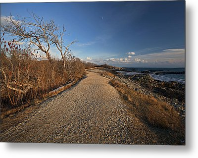 The Beaten Path Metal Print by Eric Gendron