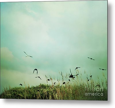 The Beautiful Flight Metal Print by Sharon Coty