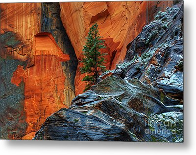 The Beauty Of Sandstone Zion Metal Print by Bob Christopher