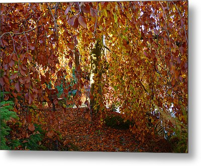 The Best Bench Metal Print by Connie Handscomb