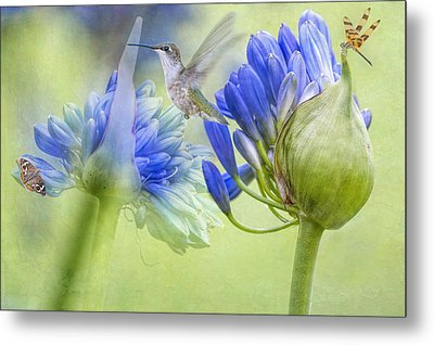 The Best Way To Keep Love Is To Give It Wings Metal Print by Bonnie Barry