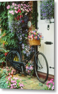 The Bicycle At Lavender Cottage Metal Print by MGL Meiklejohn Graphics Licensing