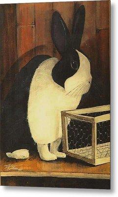 The Black And White Dutch Rabbit  2 Metal Print