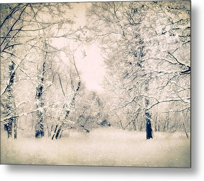 The Blizzard Metal Print by Jessica Jenney