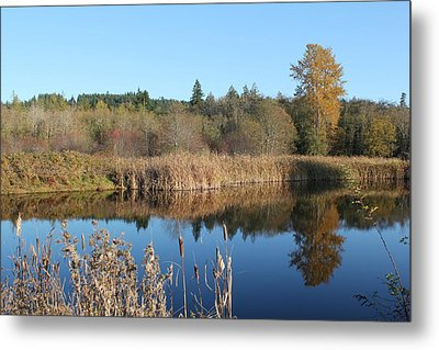 Metal Print featuring the photograph The Blue Mirror by E Faithe Lester