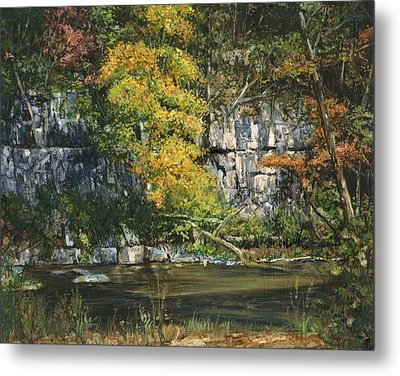 The Bluffs River Trail Metal Print