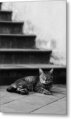 The Boss Metal Print