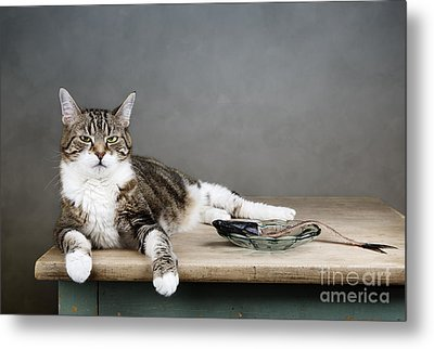 The Boss Metal Print by Nailia Schwarz