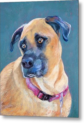 Bailey Metal Print