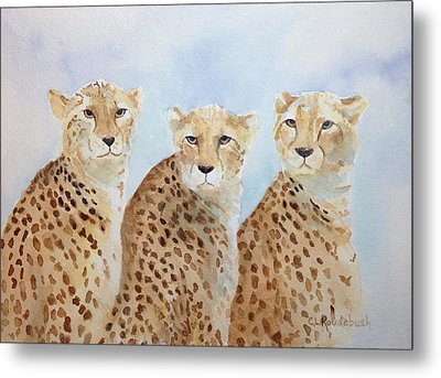 The Boys Metal Print by Cynthia Roudebush