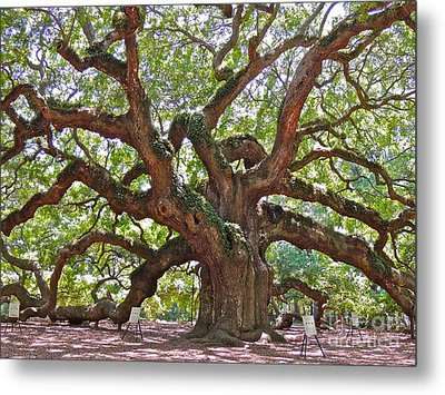 The Branches Of Life Metal Print by Eve Spring