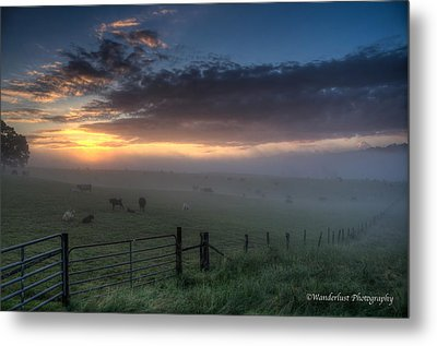 The Break Of Day Metal Print by Paul Herrmann