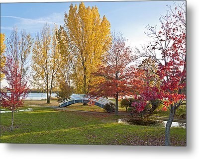 The Bridge In Autumn Metal Print by Celso Bressan