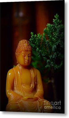 The Buddha Knows Metal Print by Paul Ward