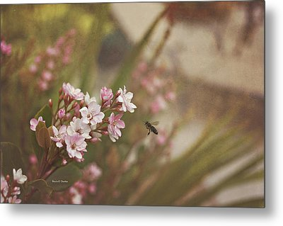 The Busy Bee Metal Print by Angela A Stanton
