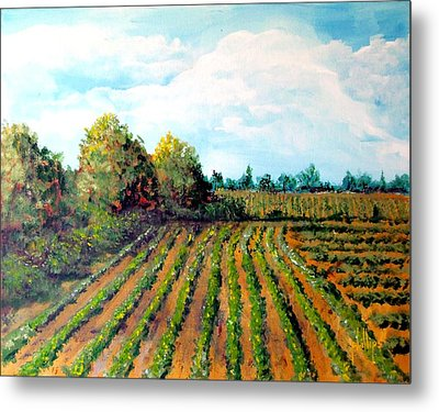 The Butter Bean Patch Metal Print