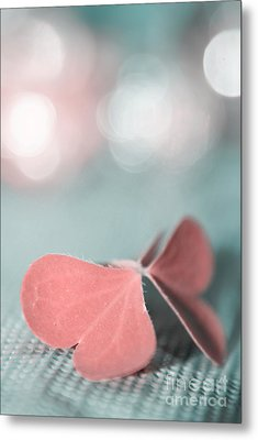 The Butterfly P02b Metal Print by Aimelle