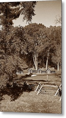 The Cabins Metal Print by Skip Willits