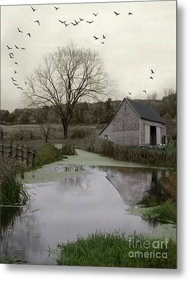 Metal Print featuring the photograph The Calm by Mary Lou Chmura