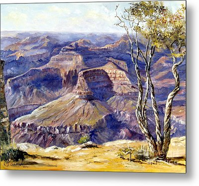 The Canyon Metal Print by Lee Piper