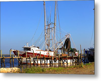 Metal Print featuring the photograph The Captain Hw by Gordon Elwell