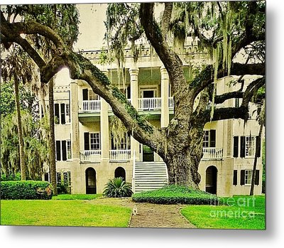 The Cat Guarding The Castle Metal Print by Patricia Greer
