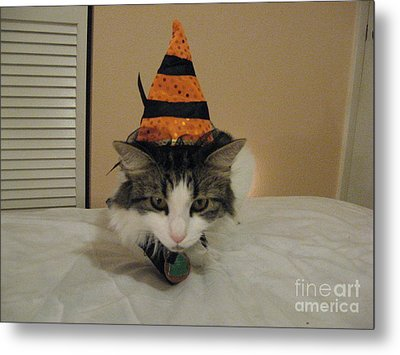 The Cat Is The Witch Metal Print