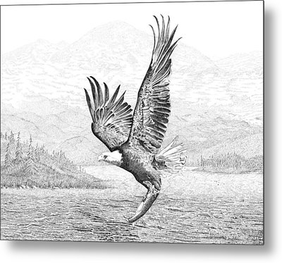 The Catch Metal Print by Carl Genovese