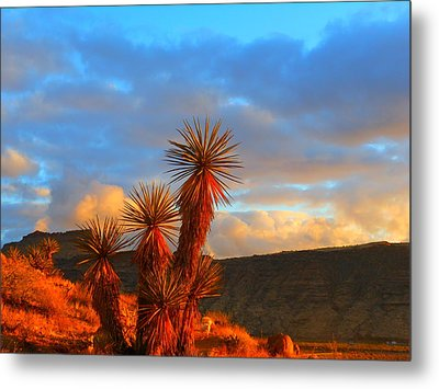The Cerbat Foothills Metal Print