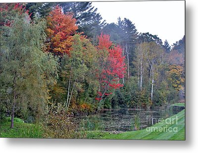 The Change In Life Metal Print by Butch Phillips