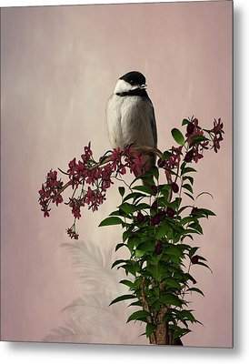 The Chickadee Metal Print