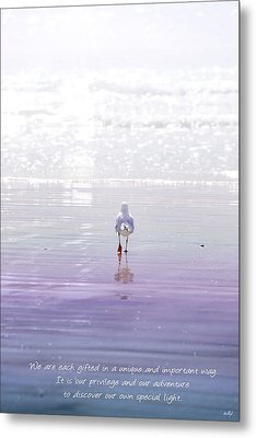 Metal Print featuring the photograph The Chosen One by Holly Kempe