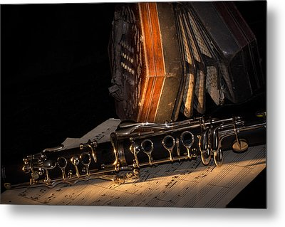 The Clarinet And The Concertina Metal Print by Ann Garrett