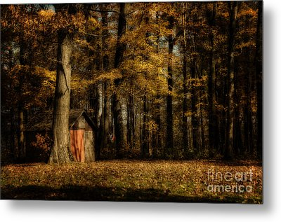 The Clearing Metal Print by Lois Bryan