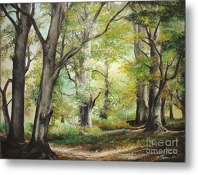 The Clearing Metal Print by Sorin Apostolescu