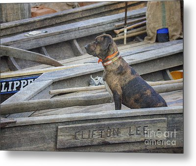 Metal Print featuring the photograph The Clifton Lee 2 by Pete Hellmann