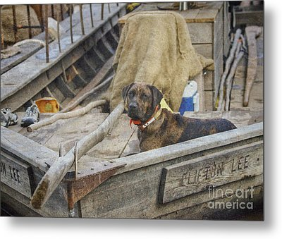 Metal Print featuring the photograph The Clifton Lee by Pete Hellmann