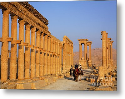 The Colonnaded Street Palmyra Syria Metal Print by Robert Preston