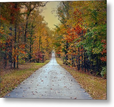 The Colors Of Fall - Autumn Landscape Metal Print by Jai Johnson
