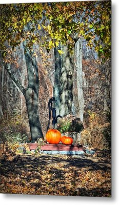 The Colors Of November Metal Print by Tricia Marchlik