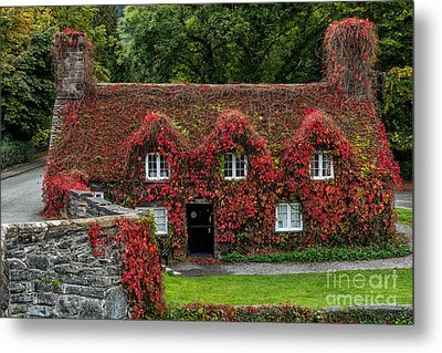 The Cottage Metal Print by Adrian Evans