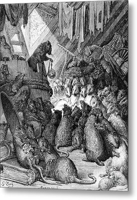The Council Held By The Rats Metal Print by Gustave Dore