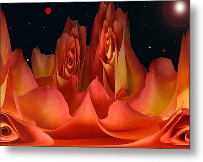 The Creation Of Rose. Metal Print