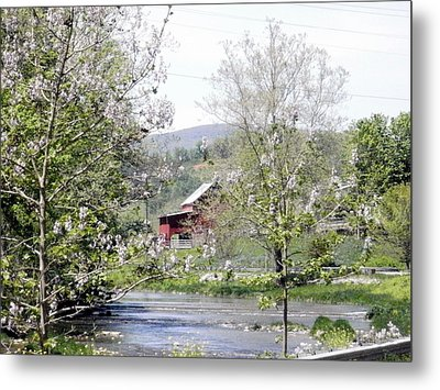 Metal Print featuring the photograph The Creek by Cathy Shiflett