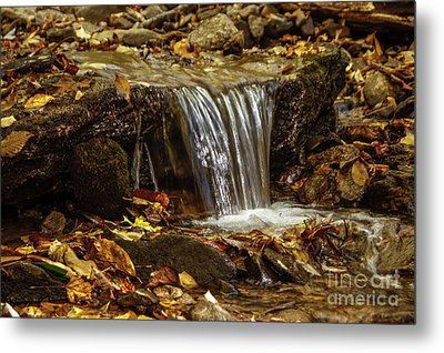 Metal Print featuring the photograph The Creek by Debra Crank