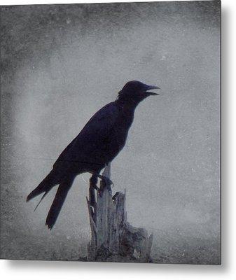 The Crow Metal Print by Justin Ivins