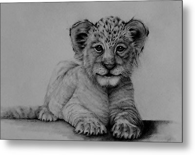 The Cub Metal Print by Jean Cormier