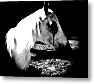 The Dark One Metal Print by Chasity Johnson