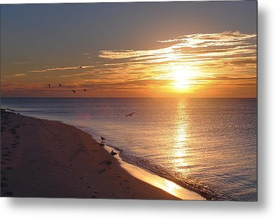 The Dawn's Early Light Metal Print